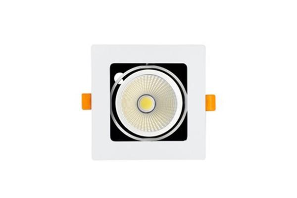 Đèn GRILL LIGHT âm trần GL-1*10-V120 Kingled