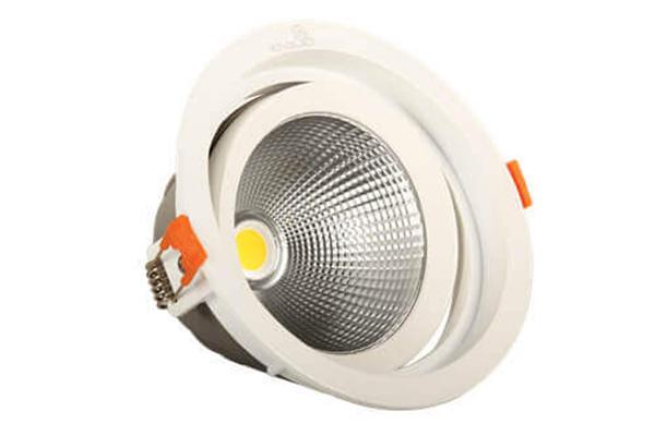 Đèn LED Downlight Rọi 10W DLR-10-T115 KingLED